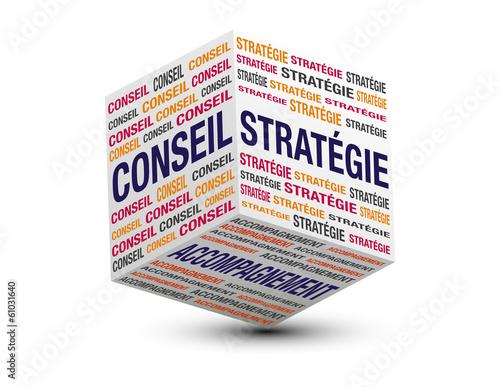 cube conseil stratégie accompagnement Canvas Print