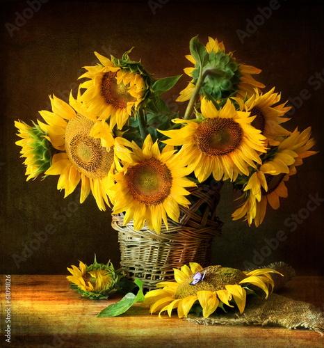 Fototapety, obrazy: Sunflowers
