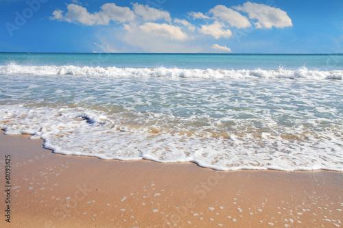 playa tropical con cielo azul