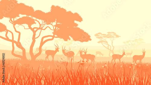 Fototapeta Afryka   ilustracja-afrykanskiej-sawanny