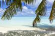 Maldives - A trip to paradise on earth