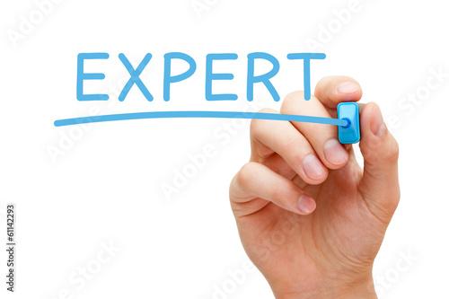 Láminas  Expert Blue Marker