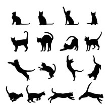 Cats  Silhouette Collection, V...