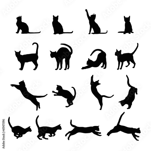 Canvas Print Cats  silhouette collection, vector