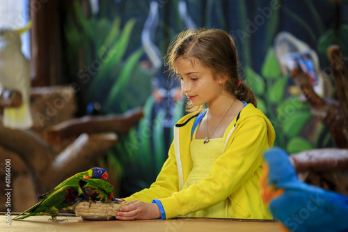 Fotografie, Obraz  Trip to the Zoo - girl feeds a parrots at the Zoo