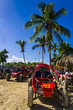 Muddy buggy standing on sand surrounded by exotic palm trees