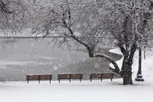 Snowfall In Boston