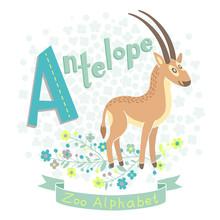 Letter A - Antelope