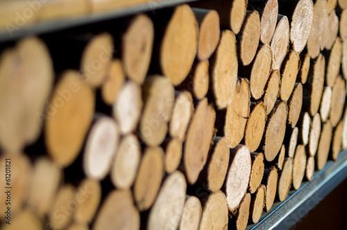 In de dag Brandhout textuur tree stumps background and texture