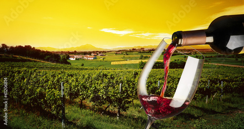 Papiers peints Vignoble vineyard in the sunset
