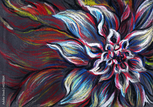 Fotobehang Paradijsvogel bloem flower .abstract background