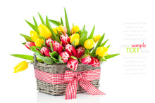 Spring Tulips In Wooden Basket...