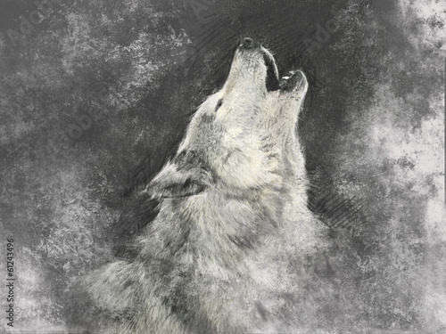 Fényképezés Wolf, handmade illustration on grey background