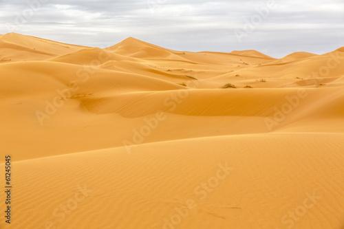 Photo  Erg Chebbi Wüste, Marokko