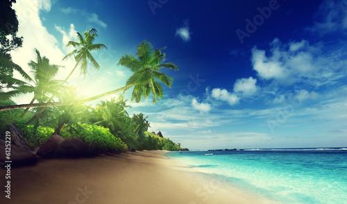 Foto auf Gartenposter Strand beach in sunset time on Mahe island in Seychelles