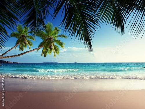 Foto-Leinwand - sunset on Seychelles beach