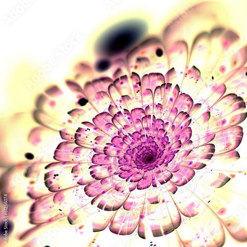 ciemny-rozowy-fraktal-kwiat-grafika-cyfrowa