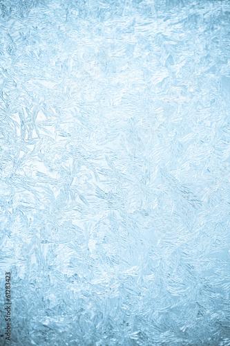 Fotografia, Obraz Icy flowers