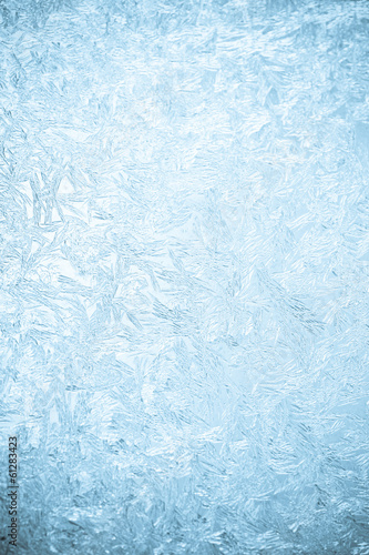 Photo Icy flowers