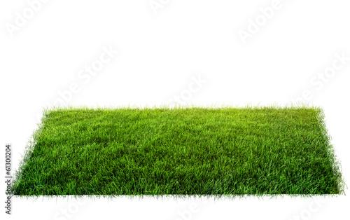 Photo sur Toile Herbe grass in field