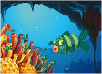 Fototapeta na wymiar A school of stripe-colored fishes under the sea