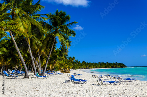 Fototapeta Exotic vacation in Dominican Republic. Palm trees, beach chairs obraz