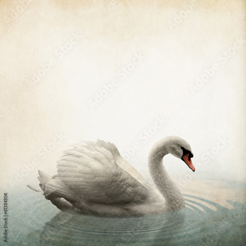 Papiers peints Cygne swan Vintage background