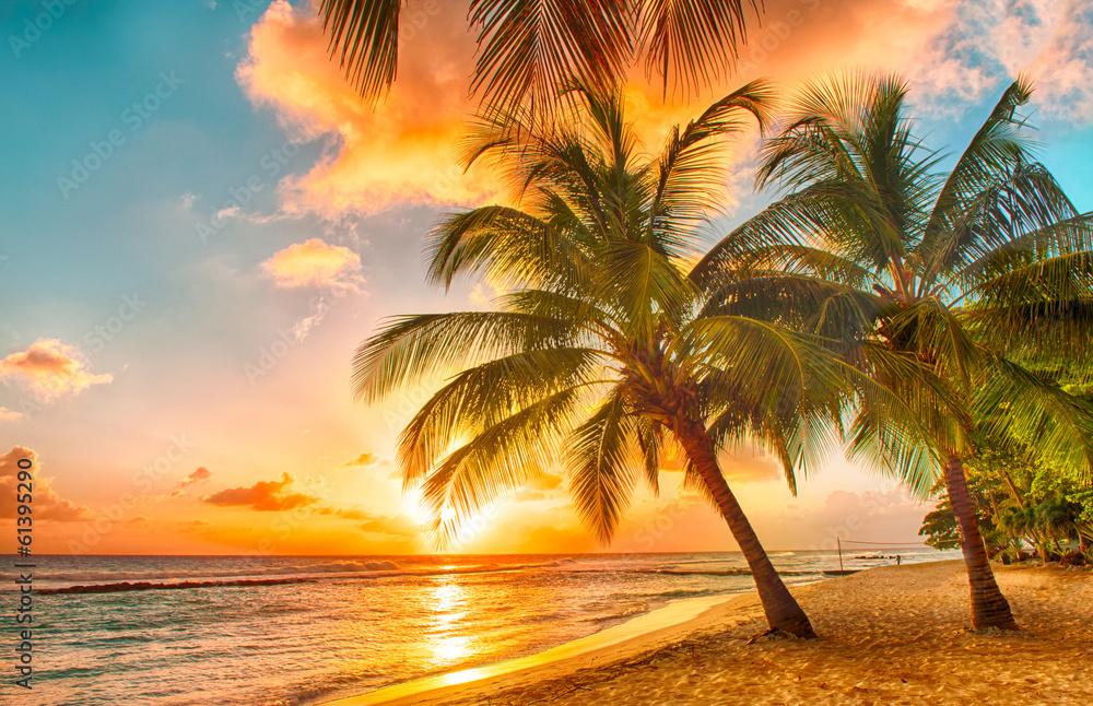 Fototapeta Barbados
