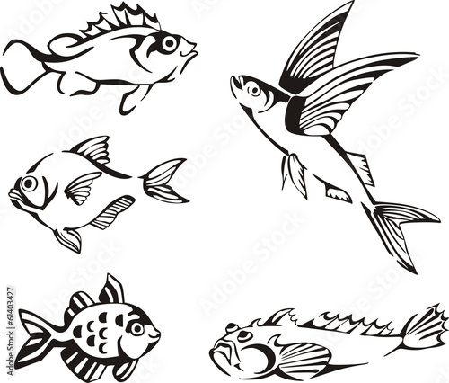 Fotografiet Set of black and white fish