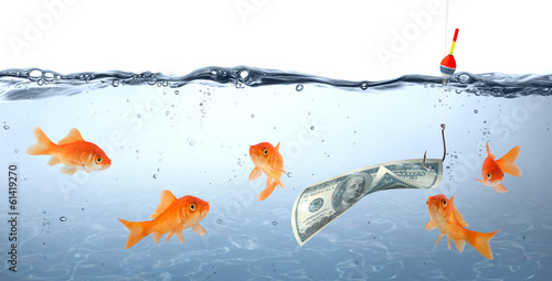 Fotografía  goldfish in danger - dollar as bait - concept deception
