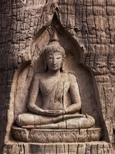 Wood Carving Buddha In The Trunk Of Tree