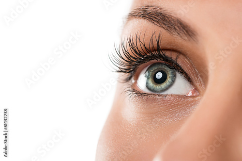 Fotografía  Close up of natural female eye isolated on white background