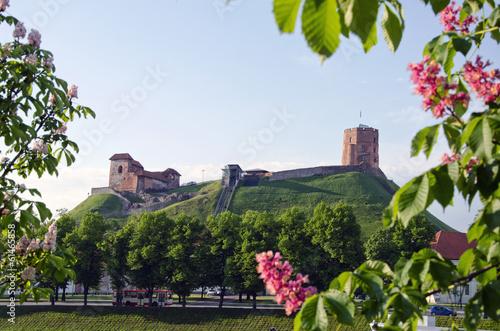 Vilnius symbol - historical tower of Gediminas, Lithuania