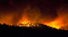 Incendio Forestal De Noche
