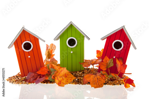 Cuadros en Lienzo bird houses with seed and leaves