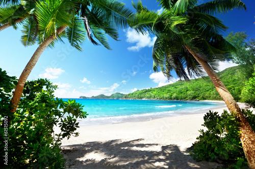 "Community Maske ""army blue"" - beach, Mahe island, Seychelles (von Iakov Kalinin)"