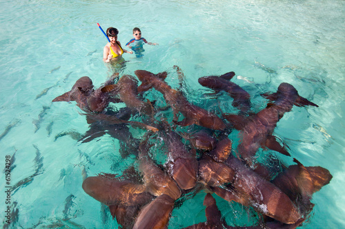 Foto  Swimming with nurse sharks