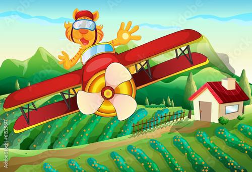 Papiers peints Avion, ballon A plane with a lion flying above the farm