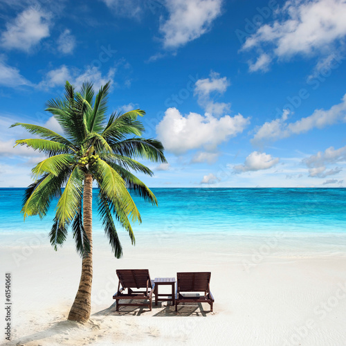 Papiers peints Palmier Relaxing under a palm tree on remote beach.