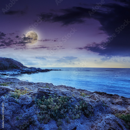 Poster Pleine lune sea wave breaks about boulders at night