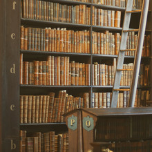 Shelves In The Long Roomin Trinity