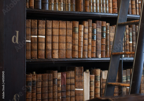 Shelves in The Long Roomin Trinity Poster