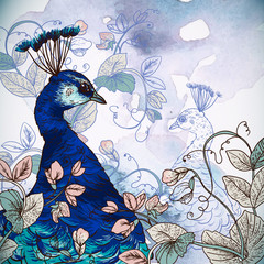 FototapetaFloral Background with Peacock