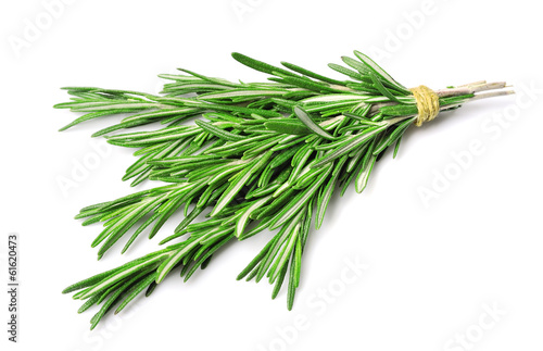 Twig of rosemary Fototapet