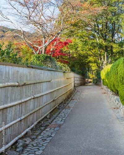 Papiers peints Bambou The Path to Chikurin-no-Michi (Bamboo Grove) at Arashiyama in Ky