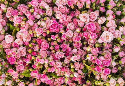plakat Abstrakcyjne tło z róż.