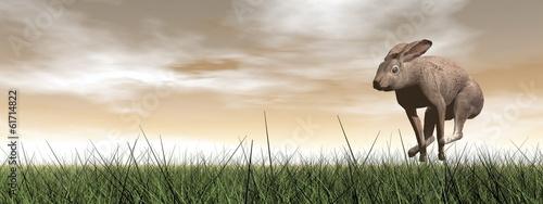 Canvas-taulu Running hare - 3D render