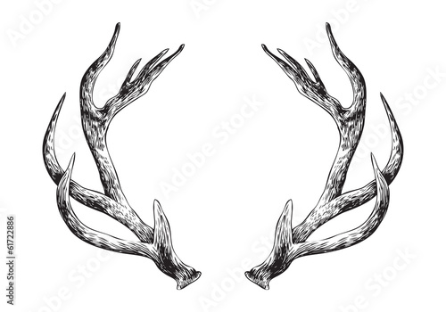 Tablou Canvas Deer Antlers