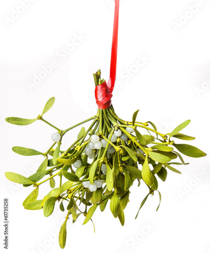 Fotografie, Obraz mistletoe isolated on a white background