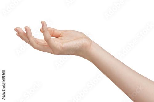 Obraz na plátne female teen hand to hold something